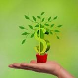 Duży wybór kredytów dla firm